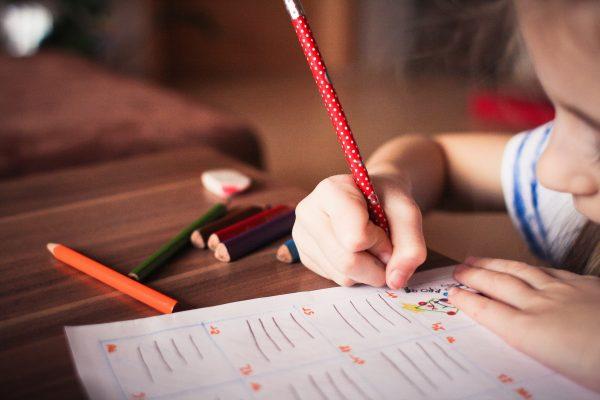 Razvoj računarskog razmišljanja za predškolski uzrast
